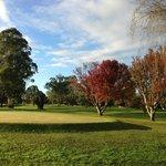 Bellingen Golf Course