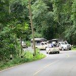 L'embouteillage pour voir les 2 éléphants