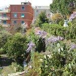 area giardino