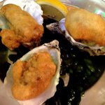 Fried rock oysters