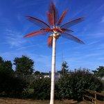 Funny plastic palm tree!