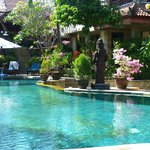 Lovely pool and gardens