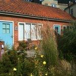 Garden Roos