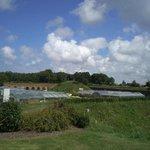 Vista de los jardines desde el jardín de los exploradores contemporaneos.