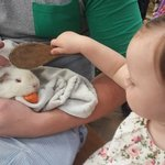 My daughter with the guinea pig