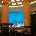 Aquario screen in the lobby