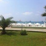 Acanthus Beach