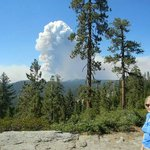 rim fire from tioga road very near White Wolf aug 26