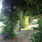 jolis passages ombragés dans le jardin