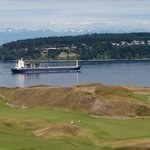 Chambers Bay Grill