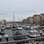 The Marina, it's full of boats