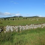 Hadrian's Wall west of Burnhead