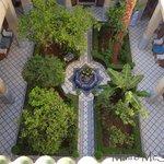 Courtyard garden from roof terrace