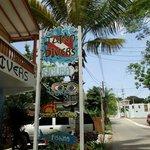 Dive Shop Sign!
