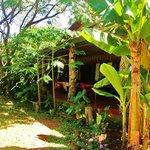 صورة فوتوغرافية لـ Cabañas Koro Nui
