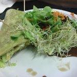 Tofurky Wrap and Salad
