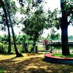 Pamba Gardens