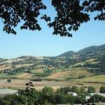 Vista panoramica sulle collina marchigiane