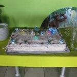 gâteau coco