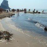 Vsita del penón y algas en la playa del Arenal de Calpe