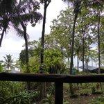 Het uitzicht vanuit de hut