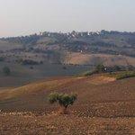 Agriturismo I Ciliegi del Checco Foto
