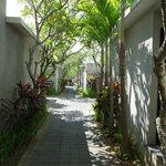 central walkway to villas