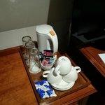 Herbidor de agua en la habitación