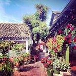Foto de Jardines de San Juan