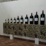 Bottle varieties