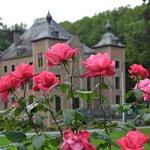Rose Gardens, Coloma