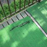 faux gazon abimé espace piscine