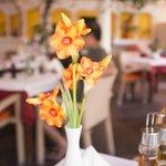 Flower / Taverna View