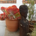 Lovely plants and carvings