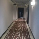 Corridor - love the carpets!