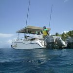 New Turtle Dive Boat