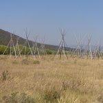 Teepee poles showing location of Nez Perce Encampment