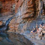 Aussie Wanderer Tours & Safaris - Day Tour
