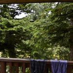 View from deck (i.e. none)