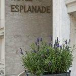 Photo of Hotel Villa Esplanade