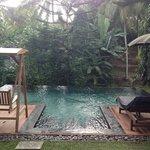 benji villa pool