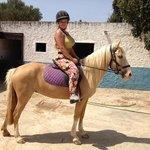 my little pony Goldie