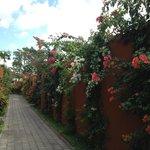 The villas alley