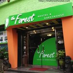 Photo of The Forest Hostel