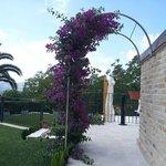 Photo of La Tana dei Leoni B&B