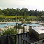 Pool on the intercoastal.