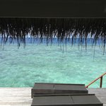 The view every monring from Water villa