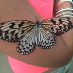 Butterfly on the Arm