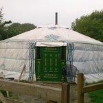 Celynnin yurt