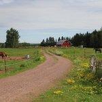 Farm on the property